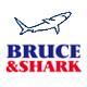 布鲁斯鲨鱼