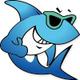 海南鲨鱼旅游